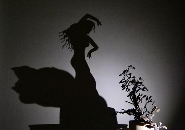 Schattenkunst von Teodosio Sectio Aurea
