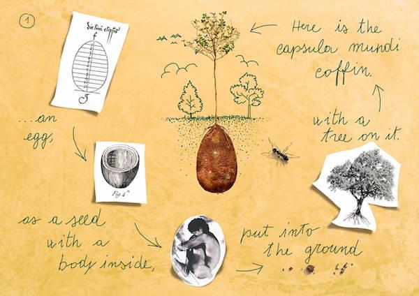 Kein Ende, sondern ein Anfang: MIt den Bestattungskapseln aus biologisch abbaubarem Material bekommt der Tod einen neuen Sinn (c) Rypley @ imgur.com